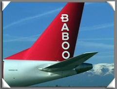 baboo_bbo02