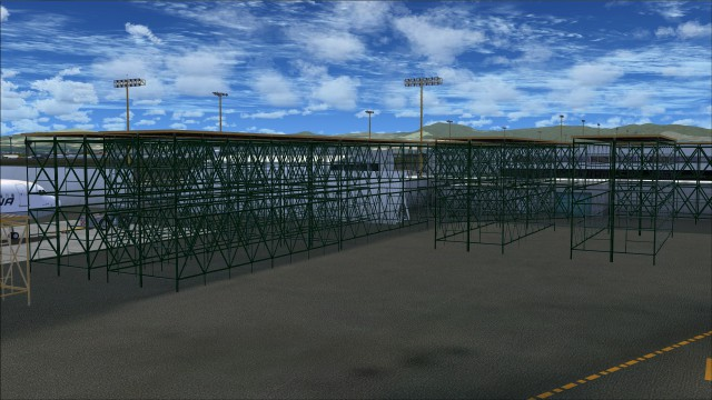 Maintenance scaffolding