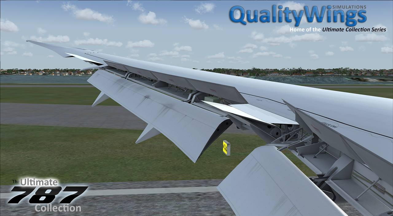 QualityWings 787 pics